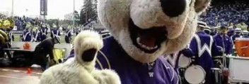 Details on the University of Washington's entering class of 2013
